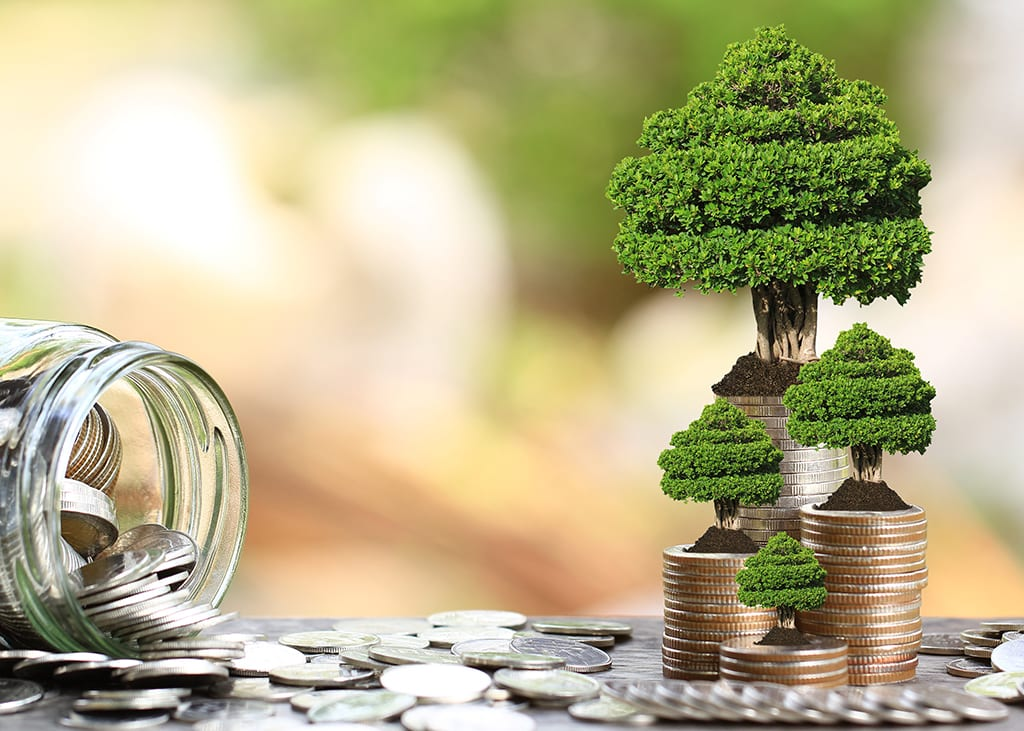 Supporting Private Equity Investing